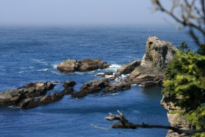 Cold Pacific Ocean Waters - Alan Sorum