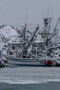 A Snowy Valdez, Alaska Harbor Photo: Alan Sorum