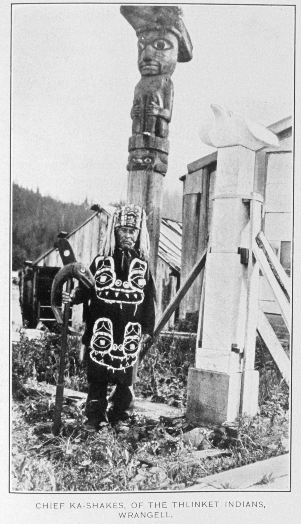 Wrangel Chief Ka Shakes