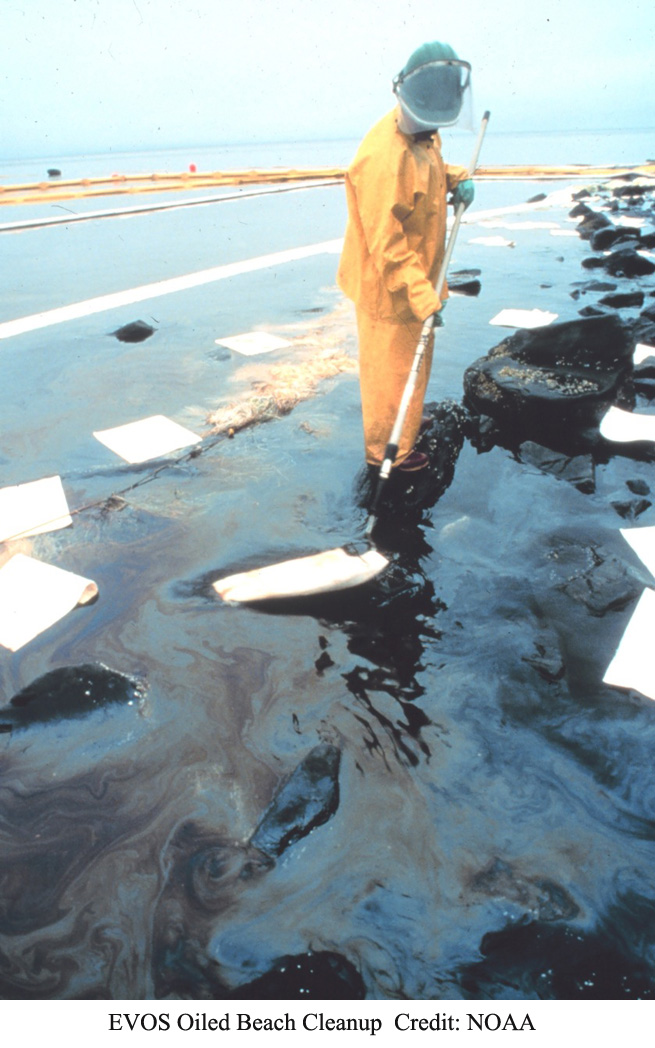 Exxon Valdez Oil Spill Beach Cleanup
