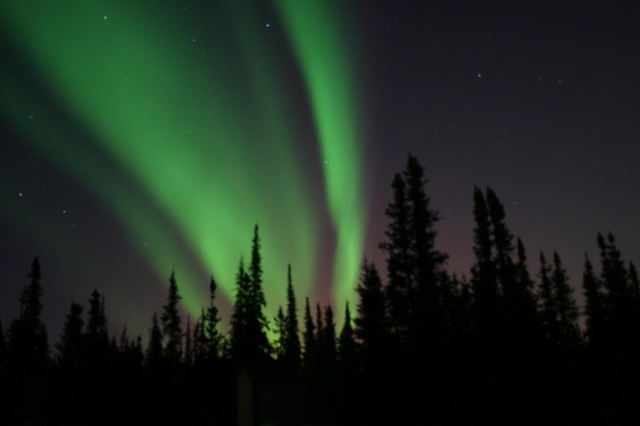 Aurora Over Fairbanks, Alaska - Alan Sorum