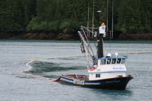 2014 Valdez Silver Salmon Run Failure Examined