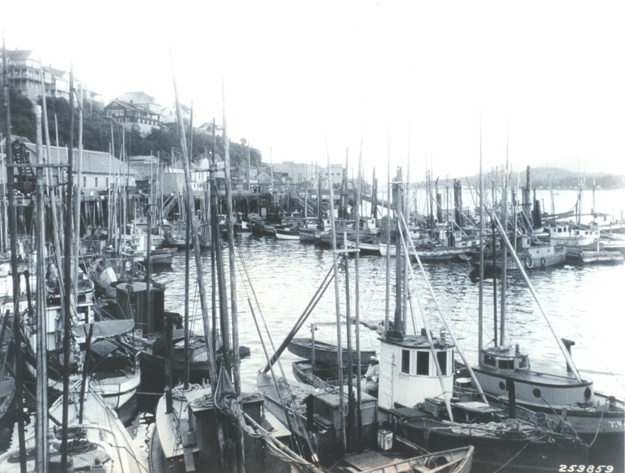 Historic Ketchikan Fishing Fleet
