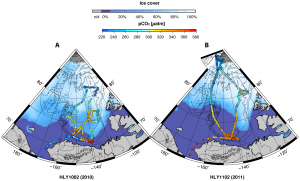 Rate and Scale of Arctic Ocean Acidification is Unparalleled