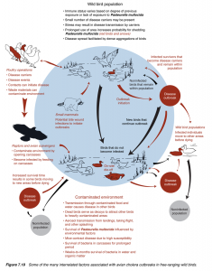 Factors Associated with Avian Cholera Spread - USGS